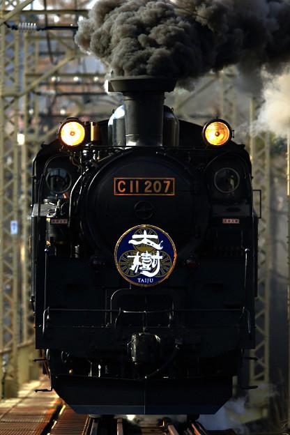 202002065001