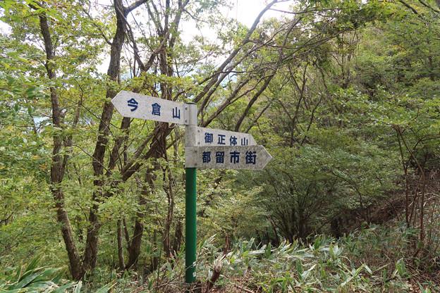 011 道坂隧道上尾根道に到着