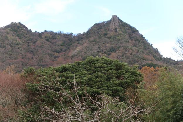 071 農道から伊予ケ岳を仰ぐ 2