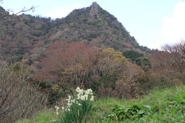 072 農道から伊予ケ岳を仰ぐ 3