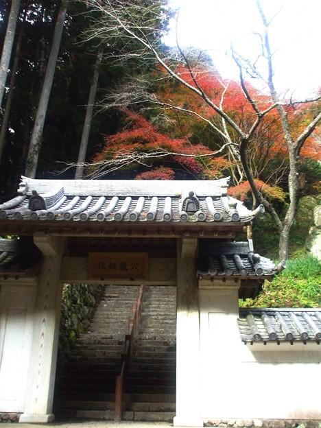 133 伏姫籠穴は階段奥に登って行くらしい