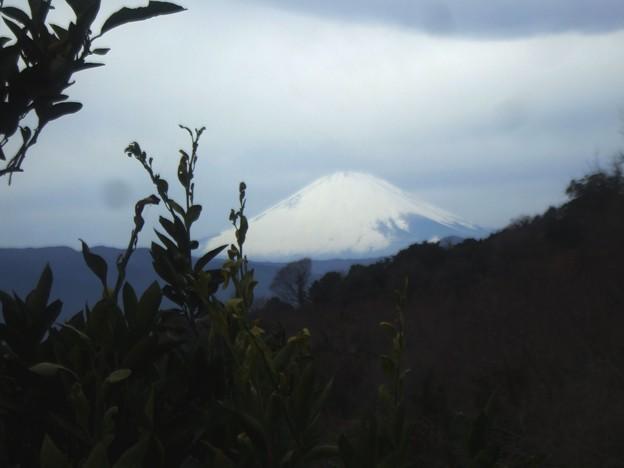 060 尾根筋からの富士山