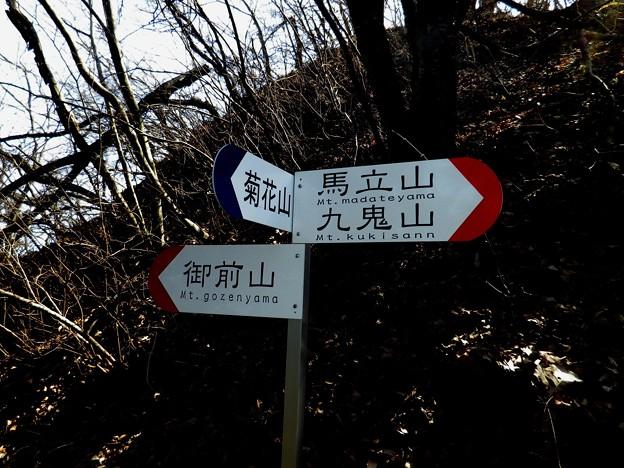 17 菊花山への枝尾根を下る