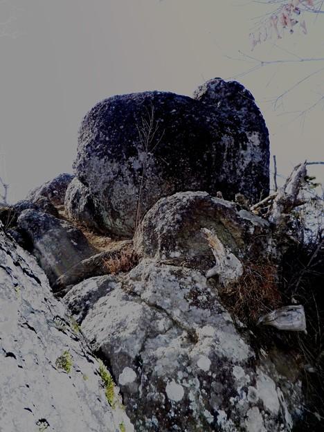 21 菊花山頂上の岩塊