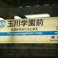Photos: OH26 玉川学園前