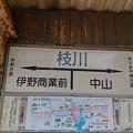 写真: 枝川