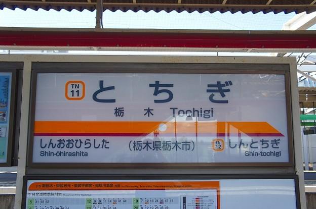 TN11 栃木