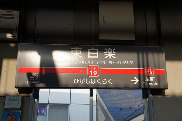 TY19 東白楽