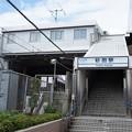 Photos: 杉田