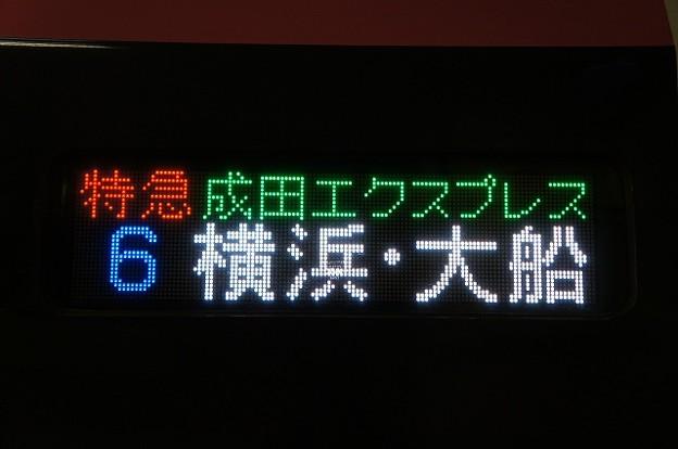 特急成田エクスプレス 横浜・大船