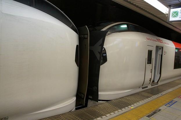 E259系+E259系