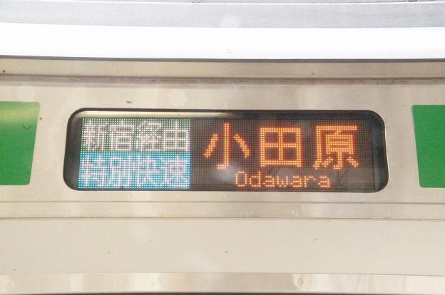 特別快速 小田原 新宿経由
