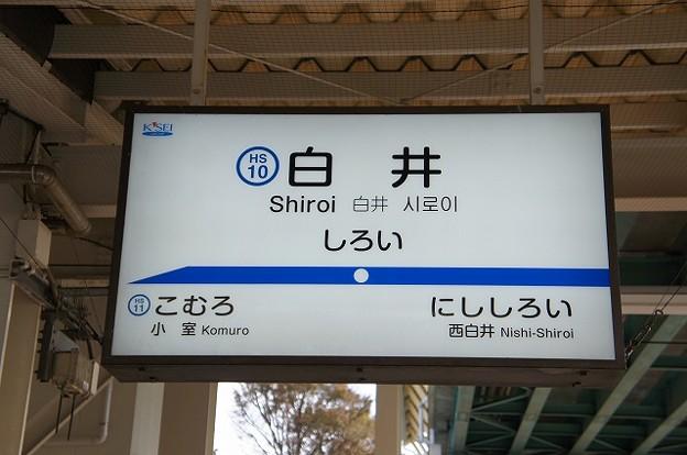 HS10 白井