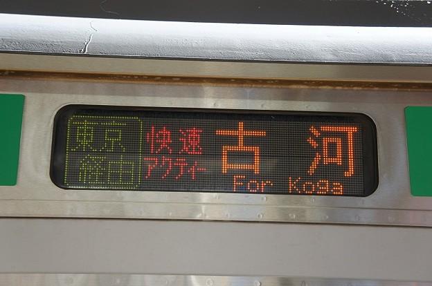 快速アクティー 古河 東京経由