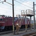 写真: EF81-80