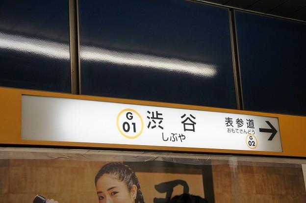 G01 渋谷