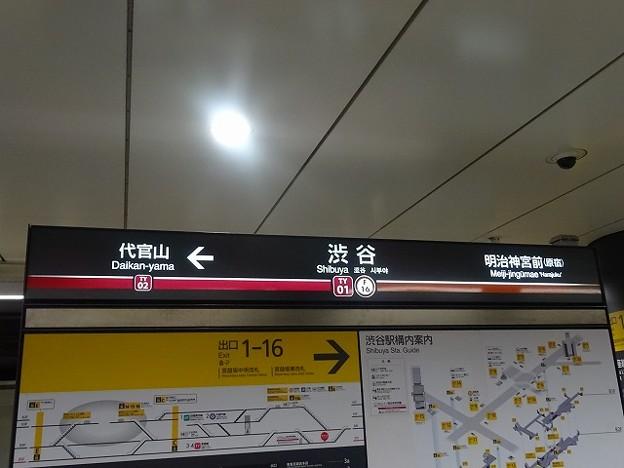 TY01 F16 渋谷