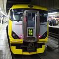 Photos: E257系500番台 ホームライナー千葉