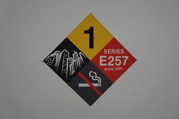 Photos: SERIES E257 since 2001
