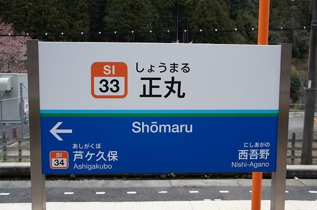 SI33 正丸