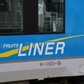 Photos: FRUITS LINER