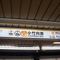 Photos: Y06 F06 SI37 小竹向原