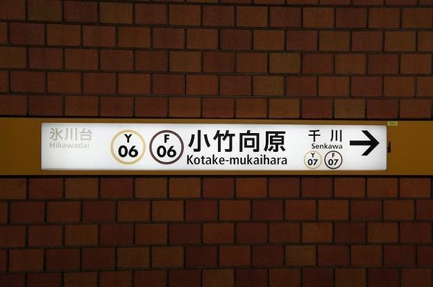 Y06 F06 小竹向原