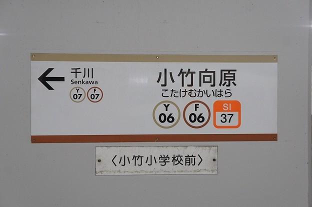 Y06 F06 SI37 小竹向原