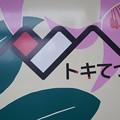 Photos: トキてつ