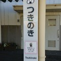 Photos: つきのき