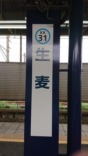KK31 生麦