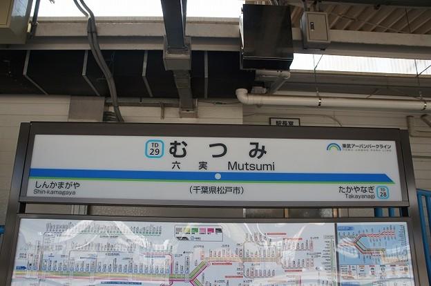 TD29 六実