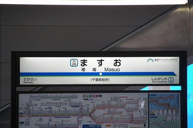 TD26 増尾
