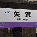 Photos: 矢賀