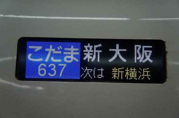 こだま 新大阪