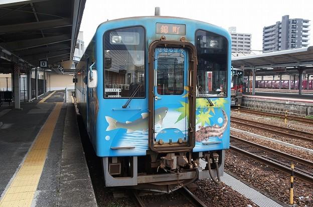 NT3000形