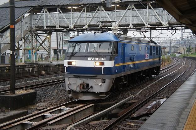 EF210-313