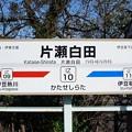 IZ10 片瀬白田
