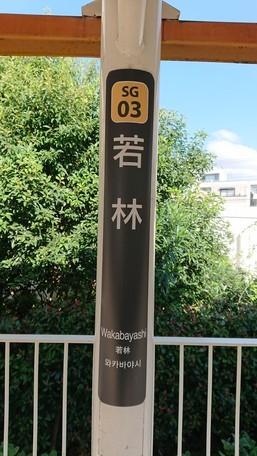 SG03 若林