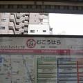 SA24 向原