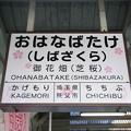 Photos: 御花畑