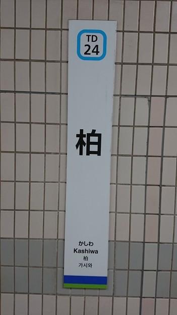Photos: TD24 柏