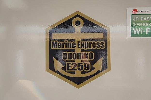 Marone Express ODORIKO E259