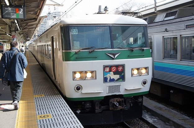 Photos: 185系