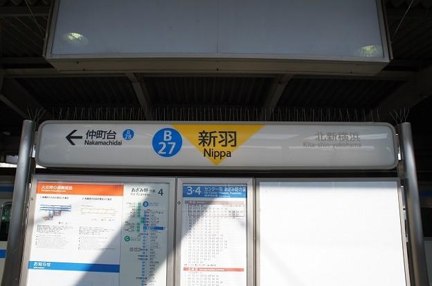 B27 新羽