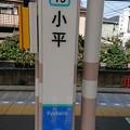 Photos: SS19 小平