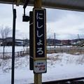 Photos: にししょろ