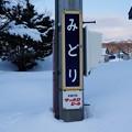 Photos: みどり