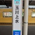 Photos: SS33 玉川上水