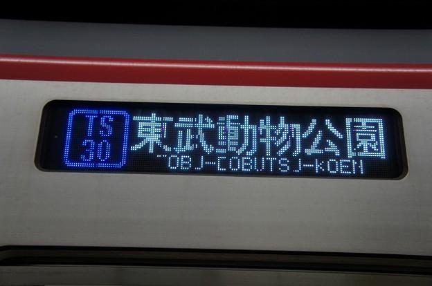 TS30 東武動物公園